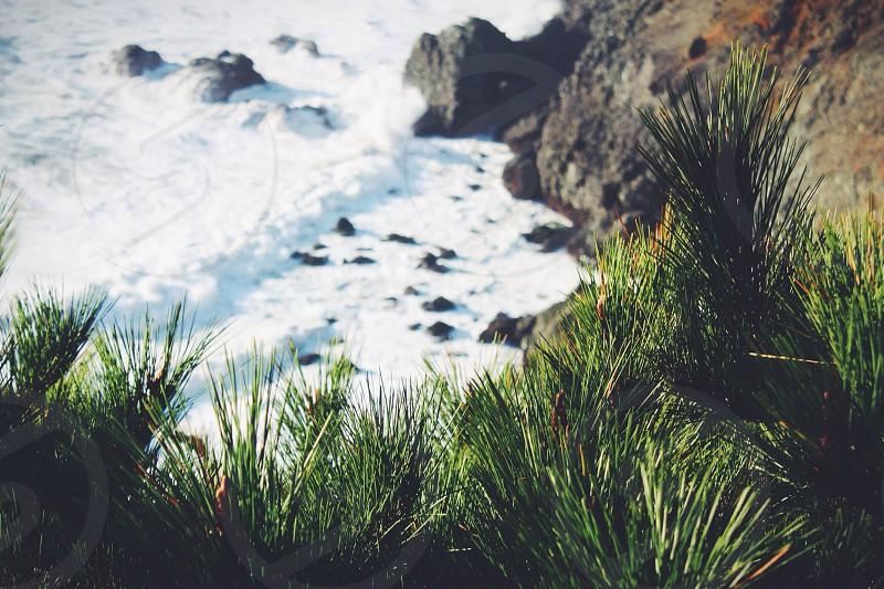 rocky shore lines photo
