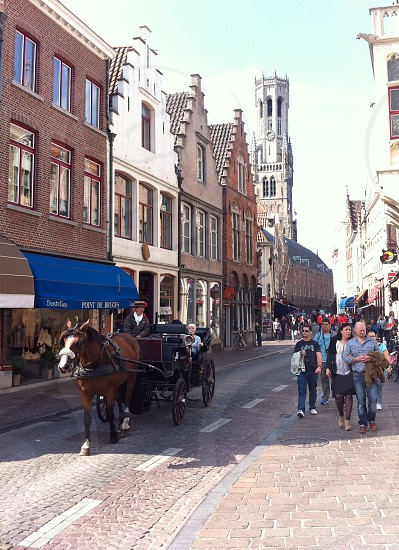 horse and cart taking tourists through the streets of Bruges in Belgium. photo