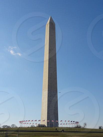 USA Flags in Washington DC photo