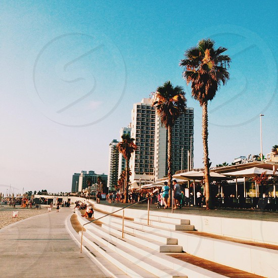 The beaches of Tel-Aviv photo