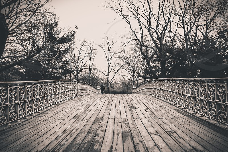 bridge view photograph photo