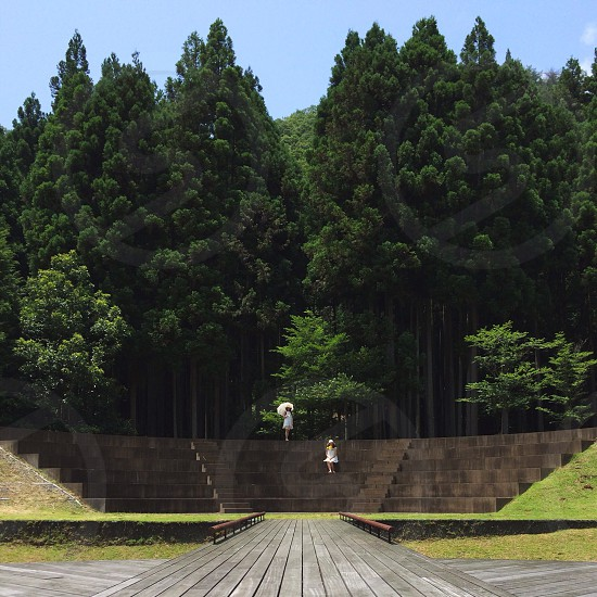 2 woman standing on concrete stairs with tall trees as background photo