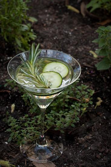 Gin Gardens Cocktails Drinks photo