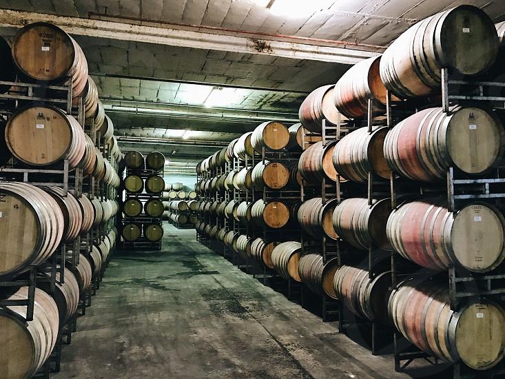 Winery vine barrels cellar  vine barrels  photo