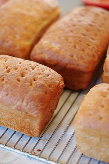 brown breads on metal rack photo