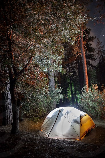 A couple in a glowing tent at night. Trees shrub outdoors camping ground site photo