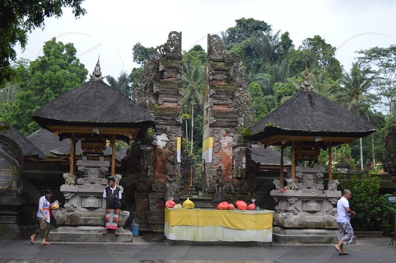 bali indonesia asia photo