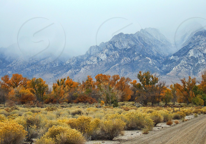 Fall landscape with misty mountains  photo