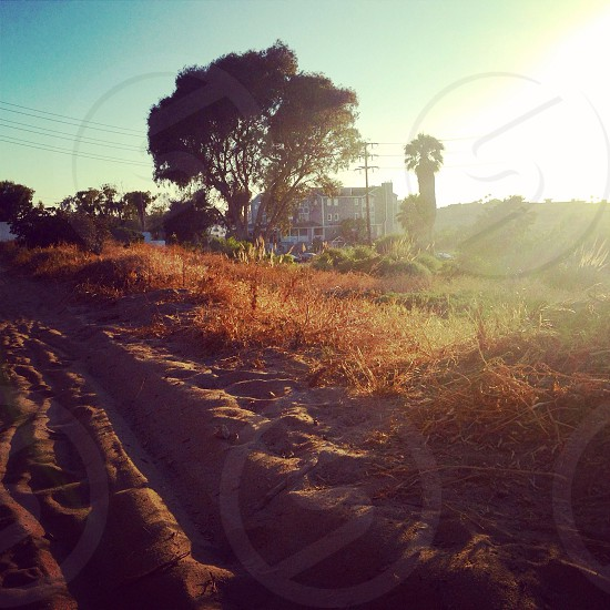 The Path at Sunset - Playa del Rey CA photo