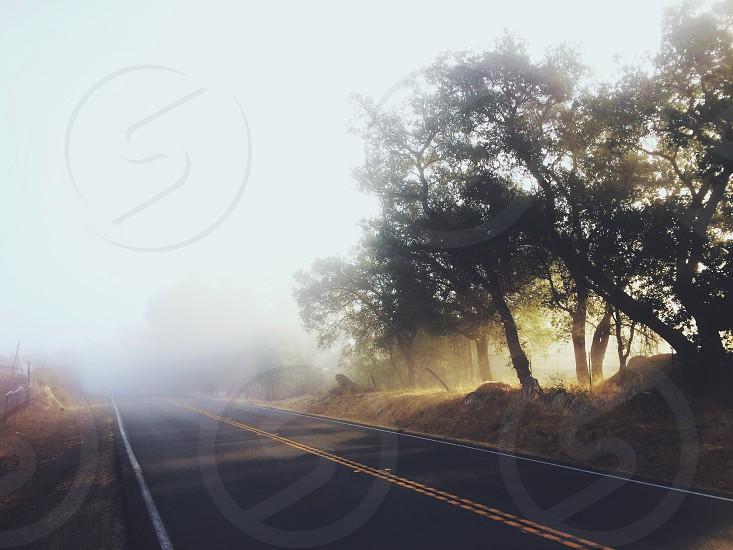 view of foggy gray asphalt road photo