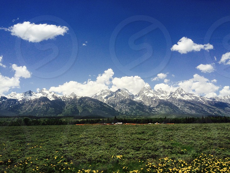 Grand Teton National Park Wyoming Usa grass trees flowers yellow flowers road cars truck mountains snow capped snow clouds sky landscape photo