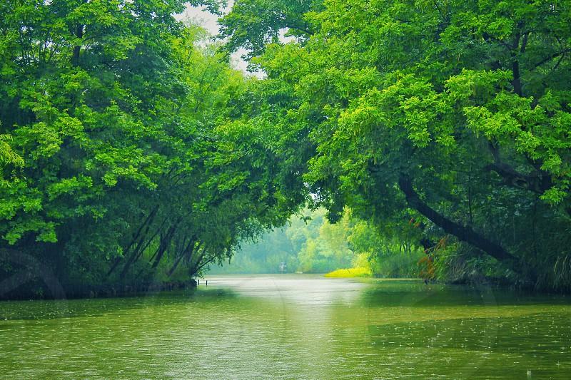 SpringgreenrainriverChinaHangzhou.. photo