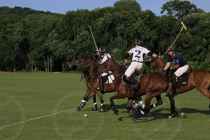 riders on horses playing polo photo