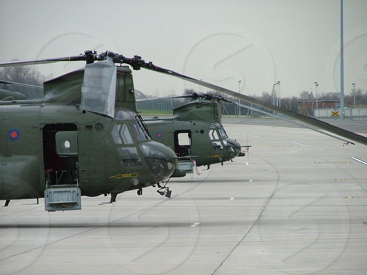 Helicopters on the line photo