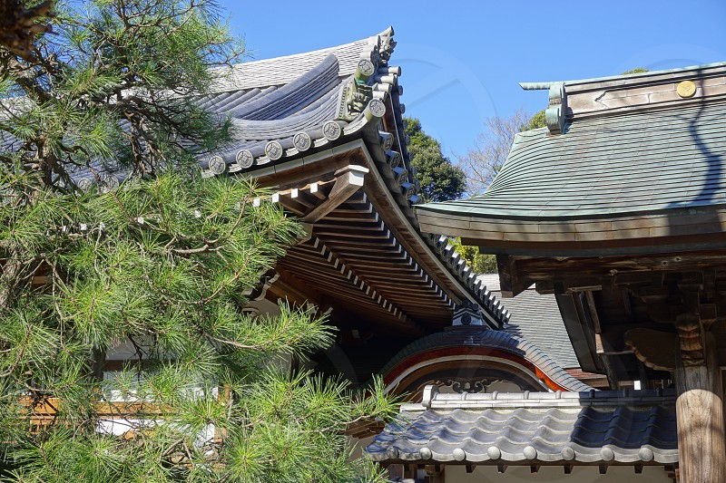 Engaku-ji - Kamakura Japan photo