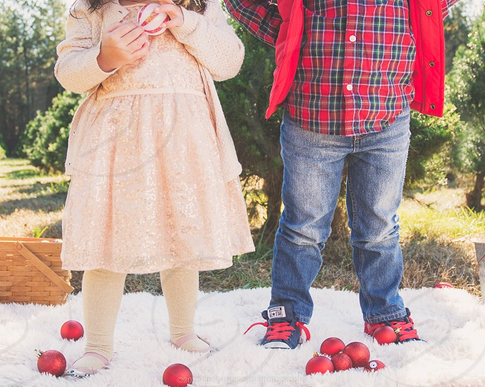 children holiday christmas decorations tree farm converse siblings photo