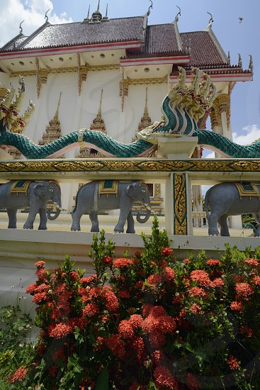 The Tempel Wat Pak Saeng near Lakhon Pheng on the Mekong River in the Provinz Amnat Charoen in the northwest of Ubon Ratchathani in the Region of Isan in Northeast Thailand in Thailand. photo