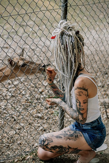 natural lifestyle portrait of empowered alternative woman wearing no make up covered in tattoos feeding a deer photo