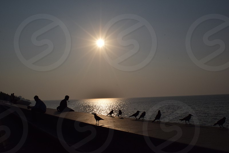 Men and birds with sun photo