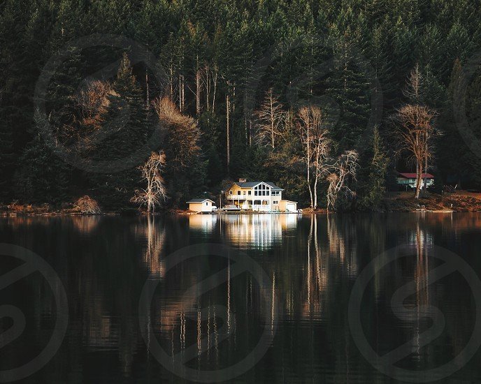white and beige house beside green pine trees near body of water during daytime photo