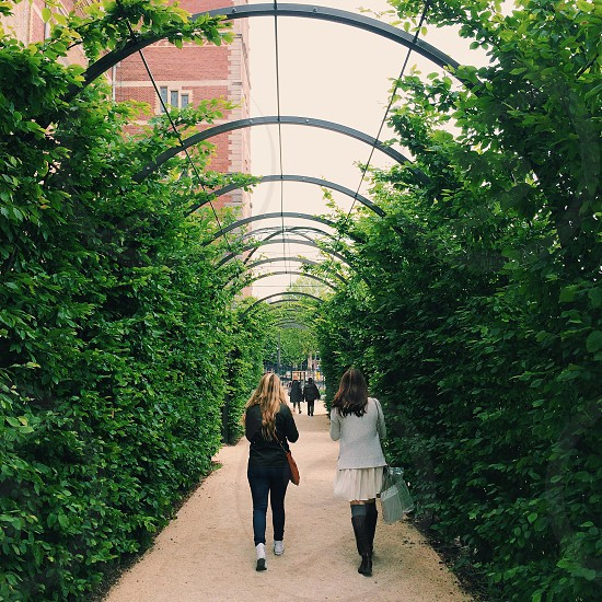 2 woman walking on vine filled pathway photo