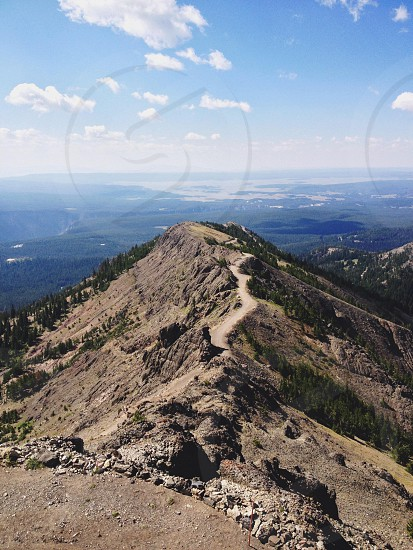 gray mountain covered with coniferous trees beneath cloudy blue sky photo