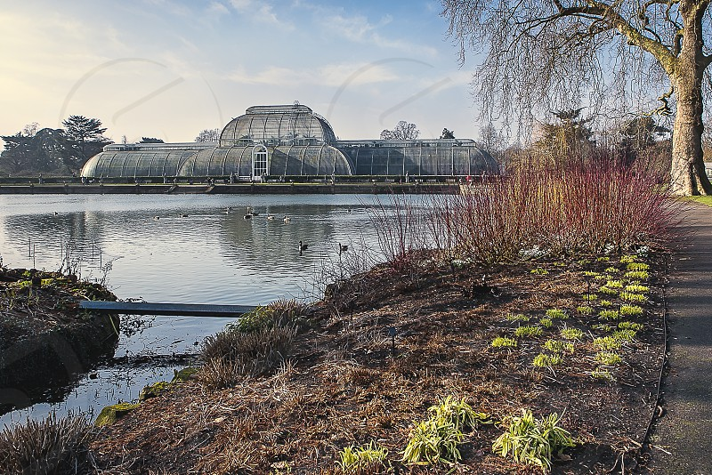 Kew Gardens in Richmond London photo