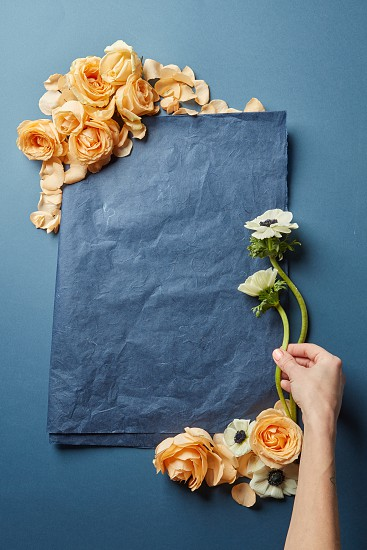Copy space of navy blue color for ideas in Valentine's Day. Card decorated with orange roses. Female's hand decorating Valentine's composition. photo