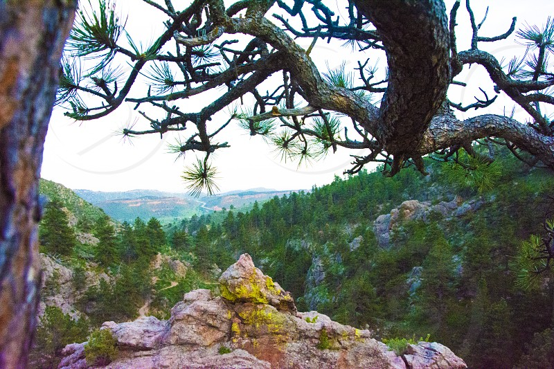 A picture overlooking Horse Tooth (a popular hiking biking and fishing spot) in Fort Collins Colo. photo