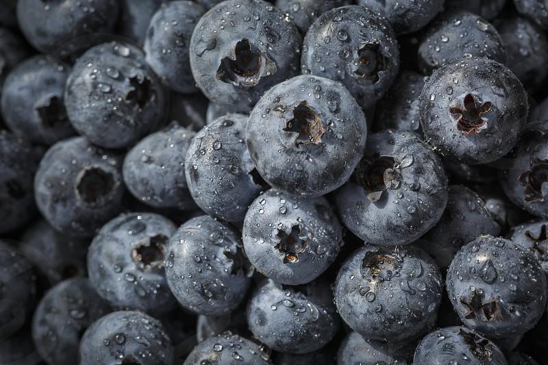 Close up of fresh organic blueberries photo
