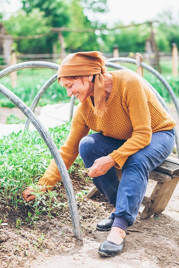 Mature woman working in the field photo