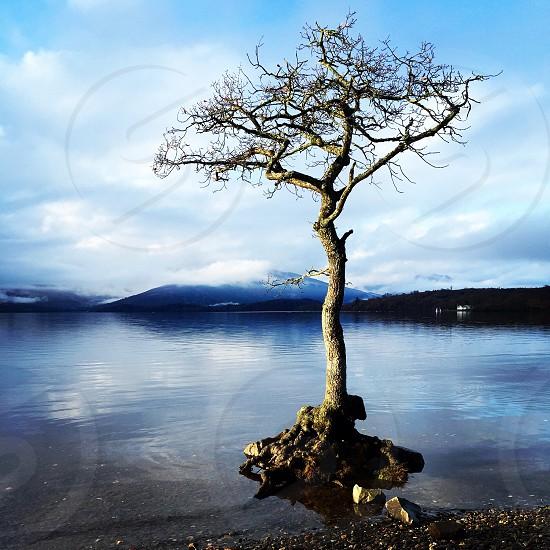 Loch Lomond Scotland photo