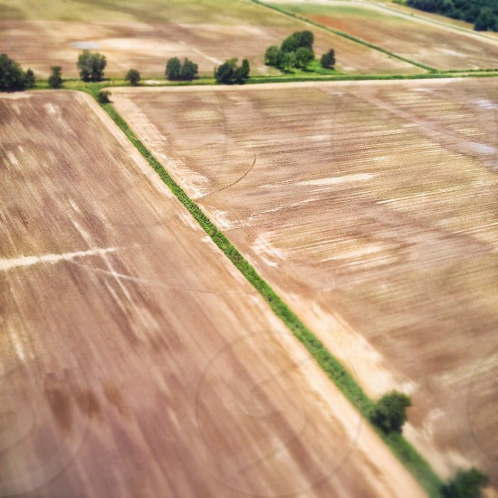 aerial view of brown field with trees photo