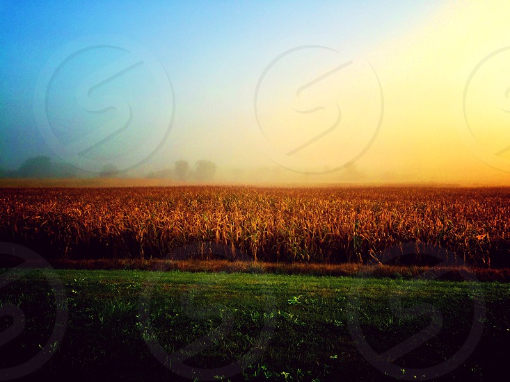 Country sunrise photo