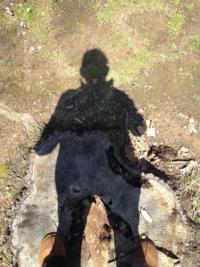 human silhouette  photo