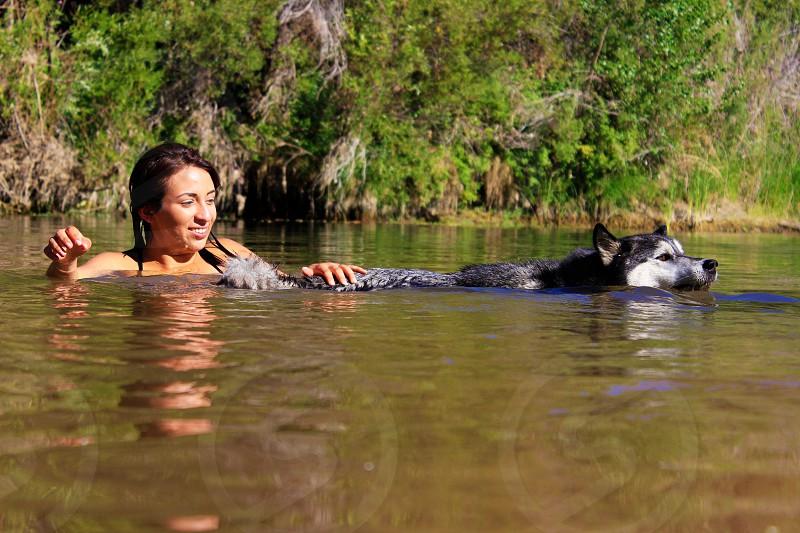 Summer swim girl dog photo