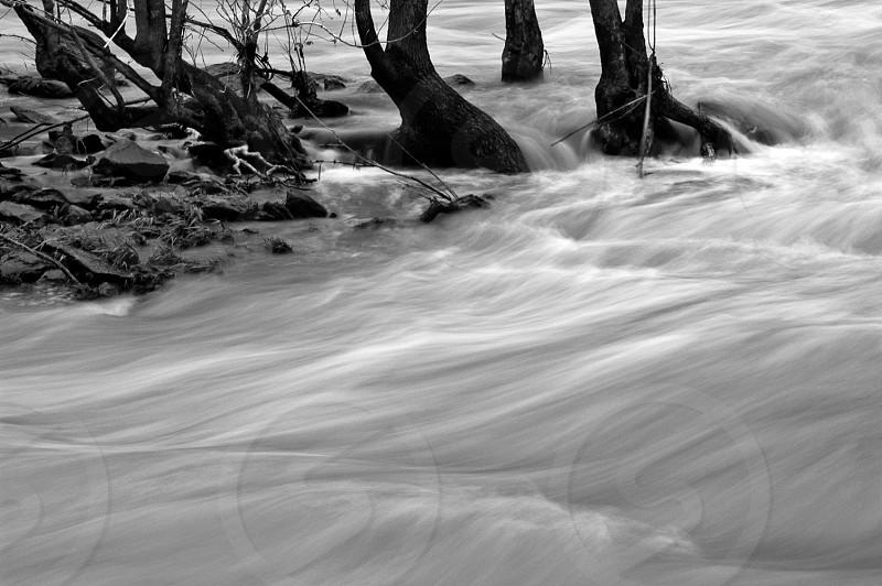 River. Vermillion river. Monochrome. Flood. photo