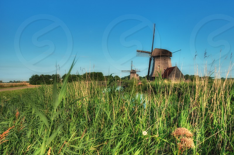windmill by green grass field  under blue sky during daytime photo