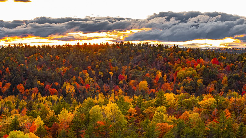 A sea of fall colors looking out towards the horizon from a cliff over a forest. It is dusk; the sun has just set and still illuminates the bottoms of clouds. photo