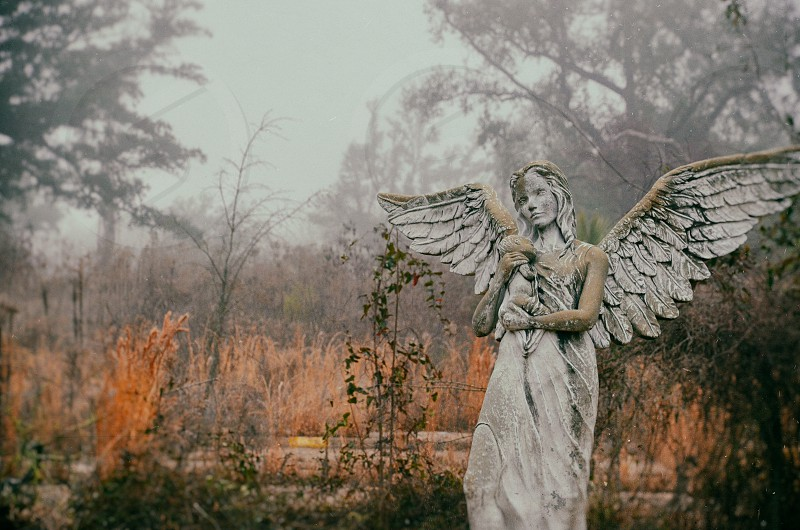 angel field fog landscape statue heavenly somber baby ground nature symbol photo