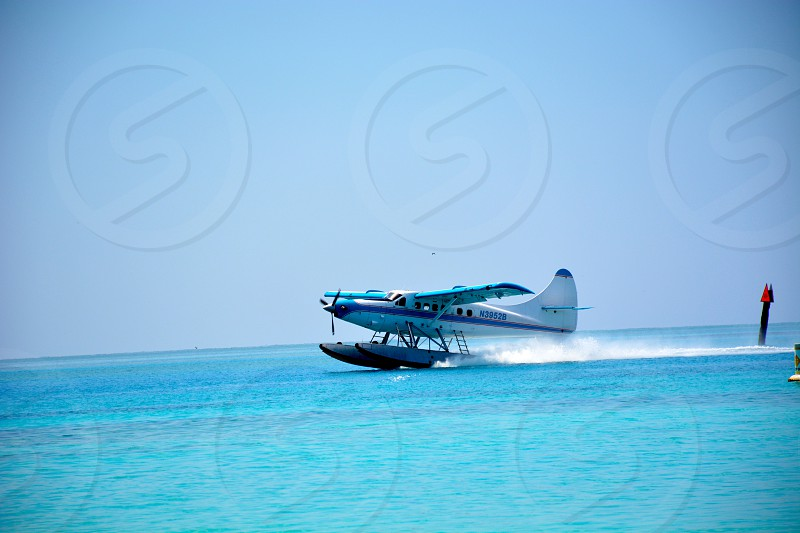 blue airplane on water photo