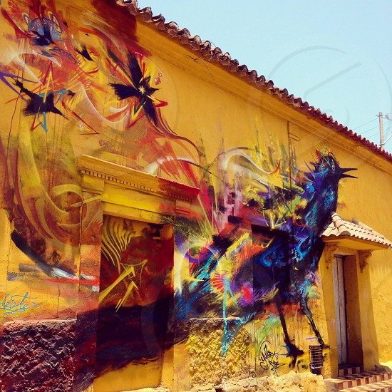 Cartagena de Indias street art (artist: Yurikamdc) photo