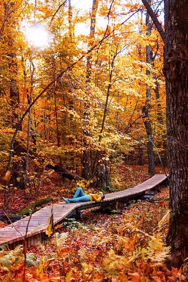Taking a break on a hike through Gatineau Park Quebec Canada. photo