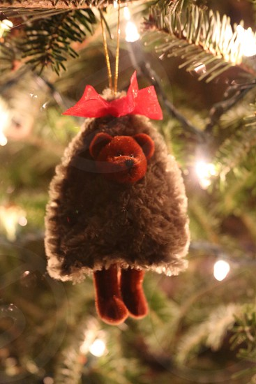 brown bear and red ribbon christmas tree decoration photo