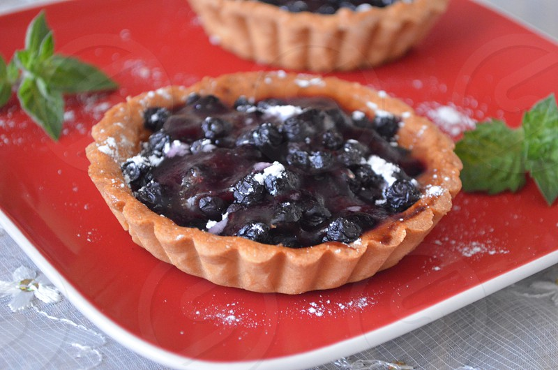 blueberry tart with white powdered sugar with green peppermint  leaves on the side on red platter photo