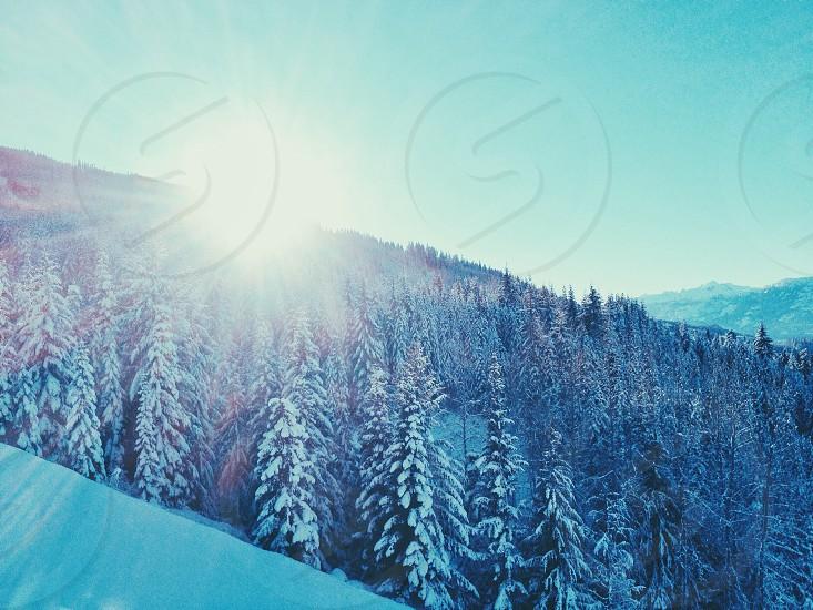 Sunny mountain winter scene with lensflare photo