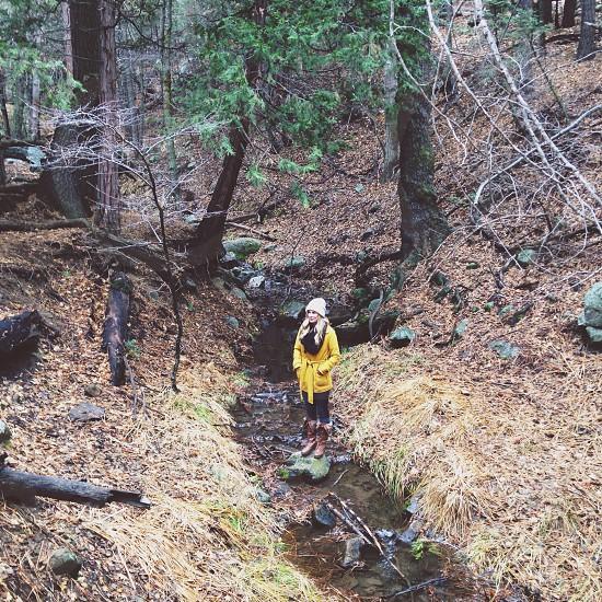 ladies yellow coat photo