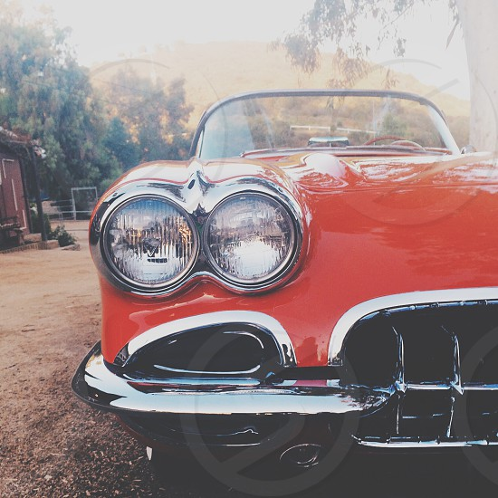 1959 Corvette  photo