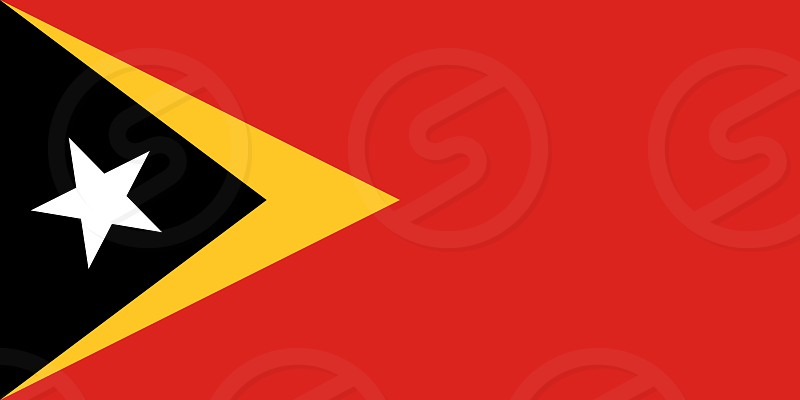 Official Large Flat Flag of East Timor Horizontal photo
