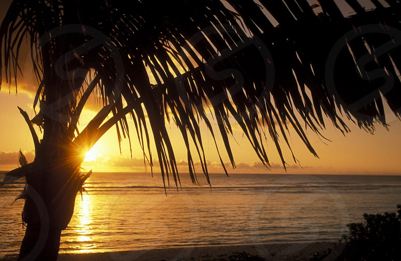a Beach near St Gilles les Bains on the Island of La Reunion in the Indian Ocean in Africa. photo